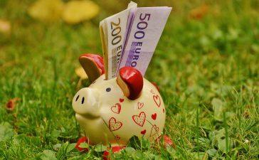 Spaarcenten euro's
